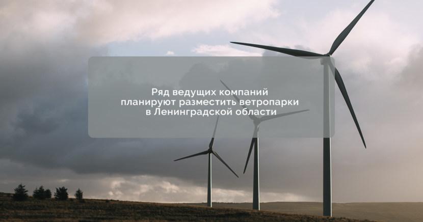 Ряд ведущих компаний планируют разместить ветропарки в Ленинградской области