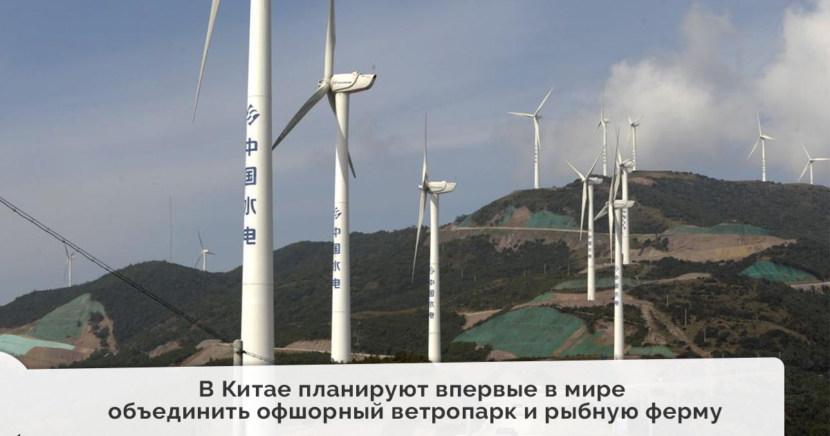 В Китае планируют впервые в мире объединить офшорный ветропарк и рыбную ферму