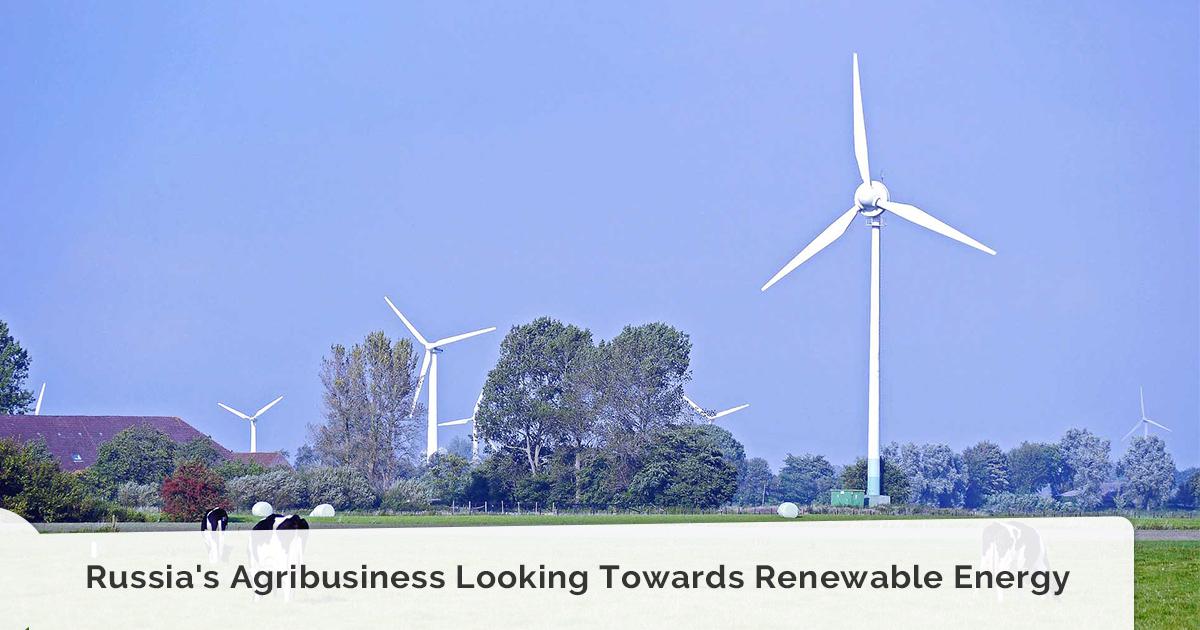 Russia's Agribusiness Looking Towards Renewable Energy